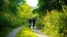 Passar 30 min/semana na natureza reduz depressão e doenças cardíacas