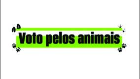 Ponto Terra adere ao projeto VOTO PELOS ANIMAIS