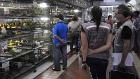 Após notificação, Mercado Central se reúne para discutir proibição da venda de animais