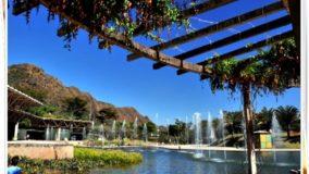 Parque das Mangabeiras fica fechado até junho, anuncia PBH