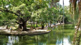 Kallil nomeia membros do Conselho Fiscal de Parques Municipais