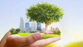 "Projeto ""Segunda Sustentável"" debaterá a nova DN 217"