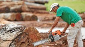 Encontro Mineiro Debate Dívida Ecológica