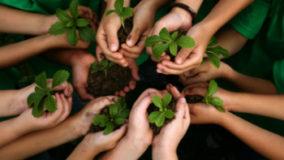 Abertas inscrições para o I Workshop de Educação Ambiental