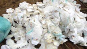 Vanuatu proibirá a venda de fraldas e outros produtos de plástico descartável