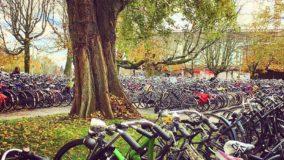 Holanda enfrenta congestionamento de bicicletas