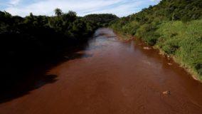 ONG afirma que rio Paraopeba está 'morto' a 40 km da barragem de Brumadinho