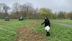 Bairro em Londres, Inglaterra, vai criar 11 km de corredor de flores para abelhas
