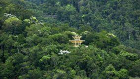Estudo mostra que Floresta da Tijuca absorve metais pesados e torna o ar do Rio mais limpo