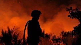 Decreto permite que bombeiros e policiais passem a atuar em unidades de conservação