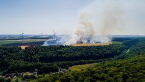 Incêndios destroem plantações durante onda de calor na França