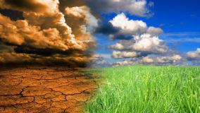 Chefe da Onu afirma que desajuste climático acontece agora e para todos