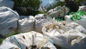 Pescador recolhe meia tonelada de garrafas plásticas em coleta voluntária no Recife