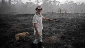 Pequeno proprietário rural diz que desmata a Amazônia para poder sobreviver