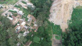 Relatório aponta que São Paulo tem 90 novas áreas desmatadas de Mata Atlântica nos últimos 5 anos