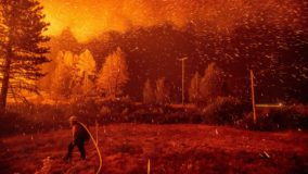 Operadoras vão cortar energia elétrica na Califórnia para evitar incêndios florestais