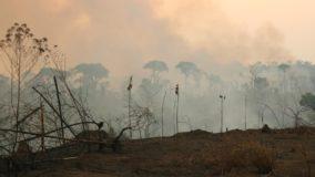 Internações de crianças por problemas respiratórias crescem em áreas de queimadas na Amazônia
