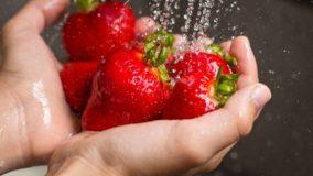 Estudante brasileira cria produto para remover agrotóxicos dos alimentos