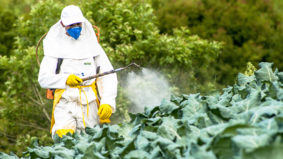 Brasil é 2º maior comprador de agrotóxicos proibidos na Europa
