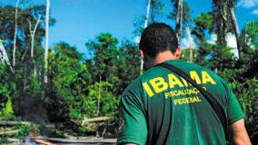 IBAMA, 31 anos.  Uma Instituição dedicada a proteger o Meio Ambiente