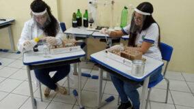 Estudantes criam repelente com canela e hortelã para combater Aedes aegypti