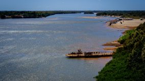 Restaurar corredor de biodiversidade pode gerar US$ 21,1 bilhões