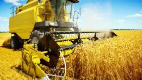 Produção de alimentos é principal causa de perda de biodiversidade