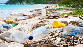 ONG quer retirar mais de 15 toneladas de lixo de praias no Sul do Brasil