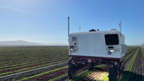 Robô substitui agrotóxicos por laser para remover ervas daninhas